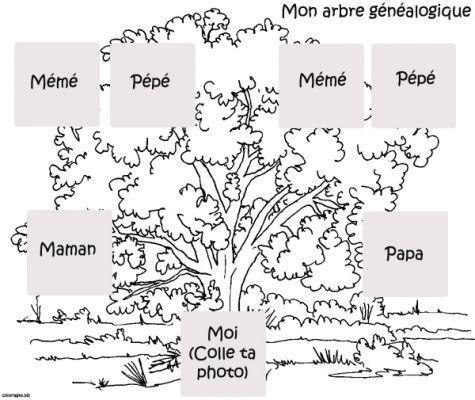 Coloriage Arbre Genealogique.Coloriage Jeux Et Activites
